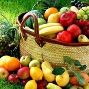 Tarım & Organik ürünler